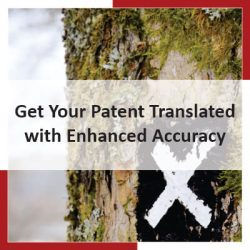 Get Your Patent Translated with Enhanced Accuracy